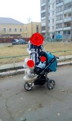 коляска для двоих для погодок