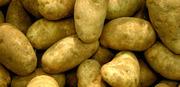 Молодой Картофель с Доставкой!